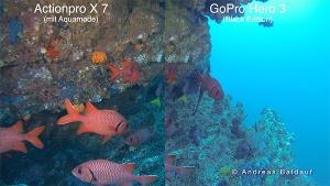 Vergleich der Actionpro X7 und GoPro Hero3 Black