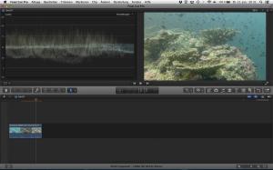 Unterwasservideo nach der Korrektur der Kontraste