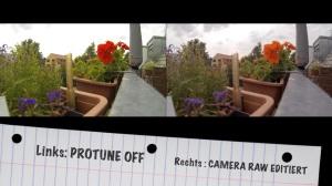 GoPro Protune Camera RAW-Vergleich