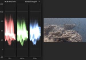 Filmschnitt bei Unterwasserfilmen: Korrektur einer Unterwasseraufnahmen